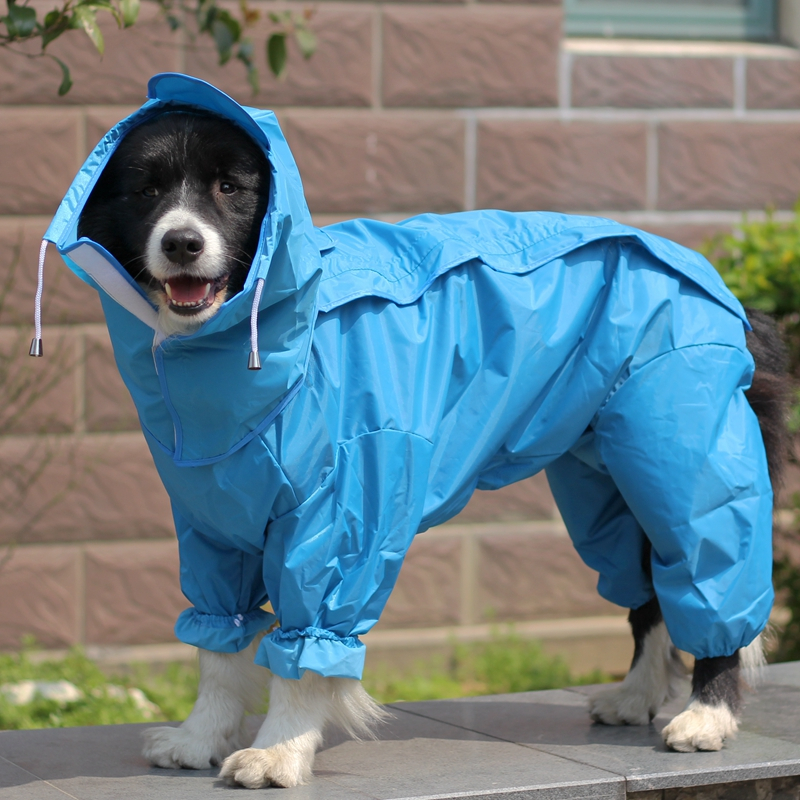 Dog Raincoat Reviews